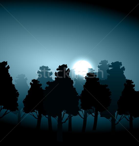 Völgy középső erdő holdfény köd reggel Stock fotó © smeagorl