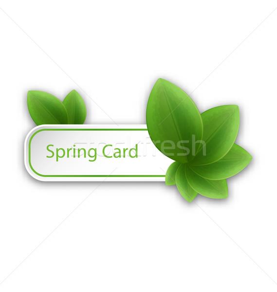 çevre dostu afiş yeşil yaprakları örnek bahar doğa Stok fotoğraf © smeagorl