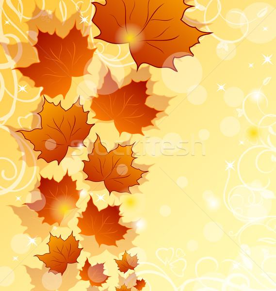 Stok fotoğraf: Sonbahar · akçaağaç · yaprakları · örnek · doku