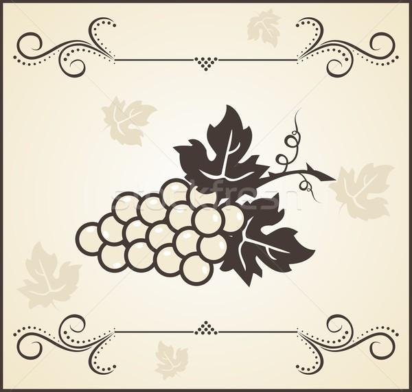 Retro winorośl ilustracja kwiat wina Zdjęcia stock © smeagorl