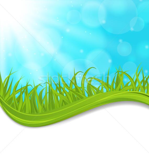 Wiosną naturalnych karty zielona trawa ilustracja krajobraz Zdjęcia stock © smeagorl