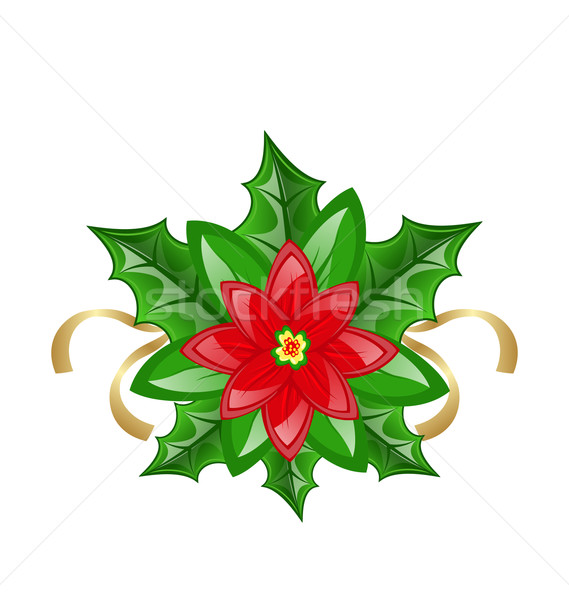 Flower poinsettia for christmas decoration Stock photo © smeagorl