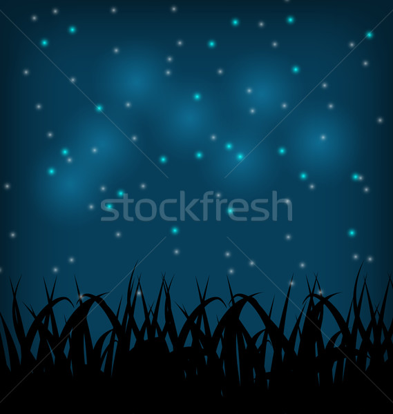 Night sky with grass field Stock photo © smeagorl