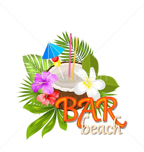 Coco coquetel verão enfeite palha ilustração Foto stock © smeagorl