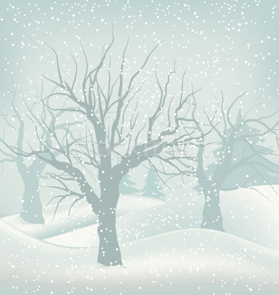 Christmas Winter Outdoor Background, Snowfall and Trees Stock photo © smeagorl