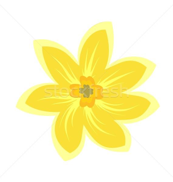 Cartoon illustration fleurs nature feuille art Photo stock © smeagorl