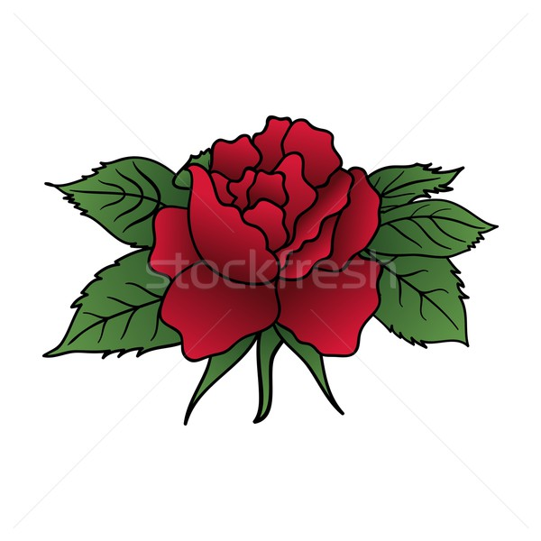 beautiful red rose isolated Stock photo © smeagorl