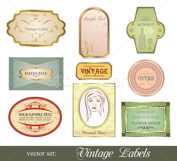 Establecer retro variación vintage ilustración Foto stock © smeagorl