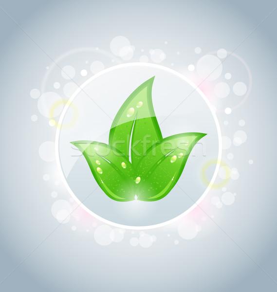 ストックフォト: 生態学 · バブル · 緑の葉 · 実例 · 春 · デザイン