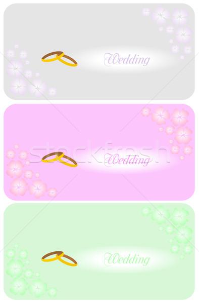 Ayarlamak güzel düğün davetiyesi vektör iş bilgisayar Stok fotoğraf © smeagorl