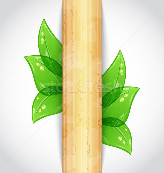 Milieuvriendelijk groene bladeren houten textuur illustratie hout Stockfoto © smeagorl