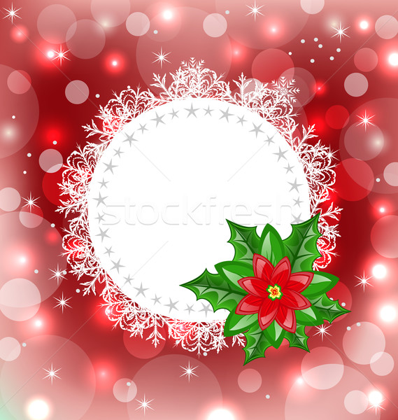 Christmas card with flower poinsettia Stock photo © smeagorl