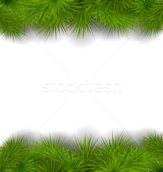 Christmas frame made in realistic fir twigs Stock photo © smeagorl