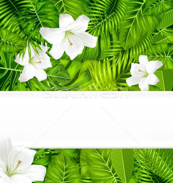 Quadro ramo tropical folhas flores brancas lírio Foto stock © smeagorl