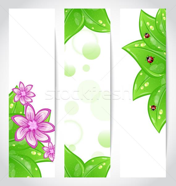 Ingesteld bio ontwerp milieuvriendelijk banners illustratie Stockfoto © smeagorl