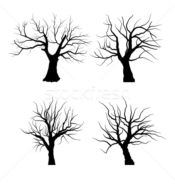 Collection Set of Trees Silhouettes isolated Stock photo © smeagorl