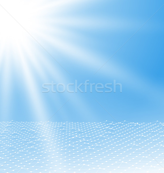 Abstract  Mesh Polygonal Surface Stock photo © smeagorl