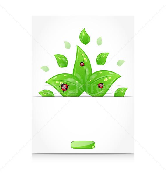 Folhas joaninhas fora cortar papel ilustração Foto stock © smeagorl