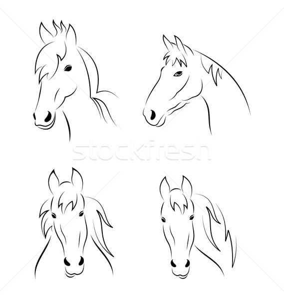 Establecer símbolos cabeza caballo aislado Foto stock © smeagorl