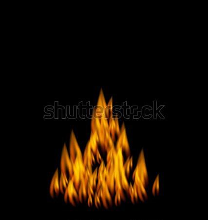 Realistico fuoco fiamma nero illustrazione luce Foto d'archivio © smeagorl