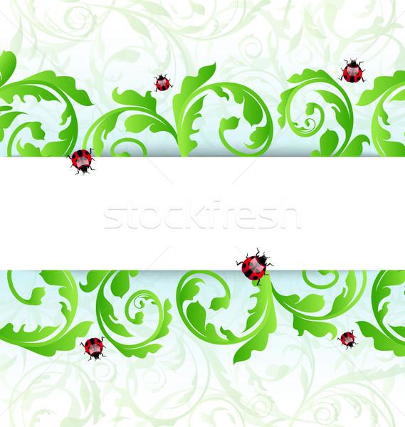 Környezetbarát katicabogarak illusztráció művészet nyár zöld Stock fotó © smeagorl