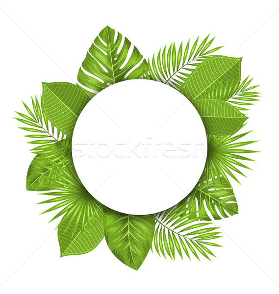 Summer Beautiful Postcard with Green Tropical Leaves for Design Stock photo © smeagorl