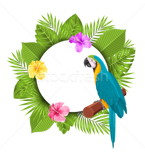 Beautiful Card with Parrot Ara, Colorful Flowers Blossom Stock photo © smeagorl