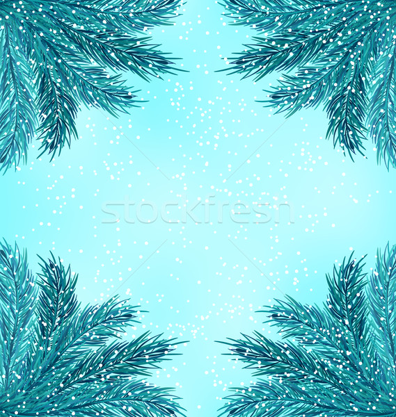Winter Nature Background with Fir Branches and Snow Fall Stock photo © smeagorl