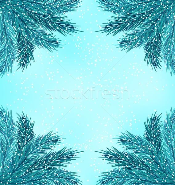 Tél természet fenyő ágak hó ősz Stock fotó © smeagorl