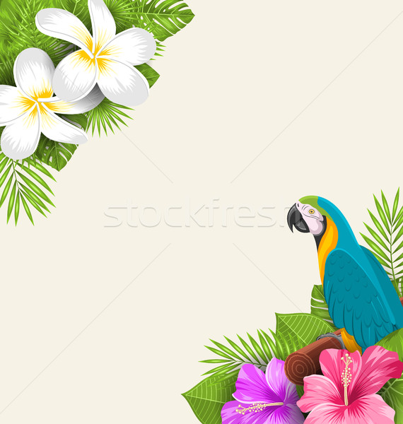 Exotic Border with Parrot Ara, Flowers Plumeria and Hibiscus Stock photo © smeagorl