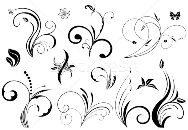 Floral vector elements Stock photo © smeagorl