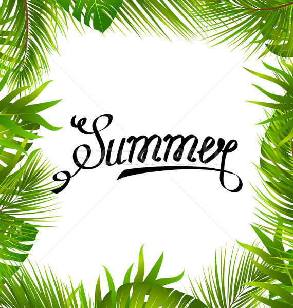 Lettering Text Summer with Border made in Palm Leaves Stock photo © smeagorl