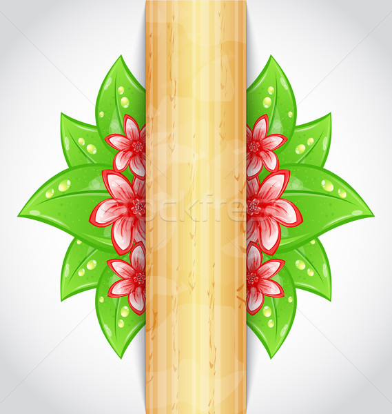 Eco friendly background with green leaves, flower, wooden textur Stock photo © smeagorl