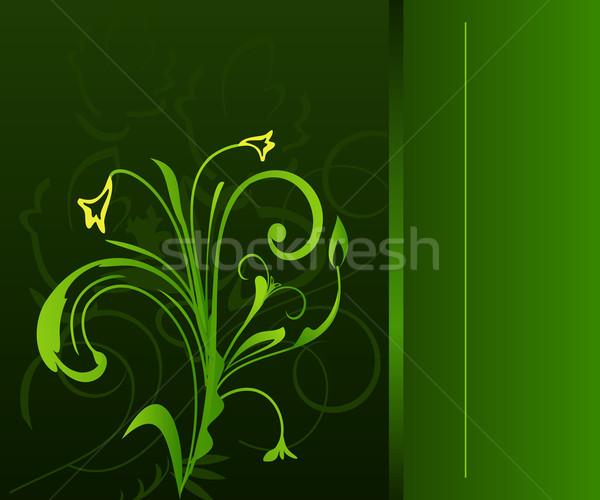 Luxe design vecteur printemps feuille fond Photo stock © smeagorl