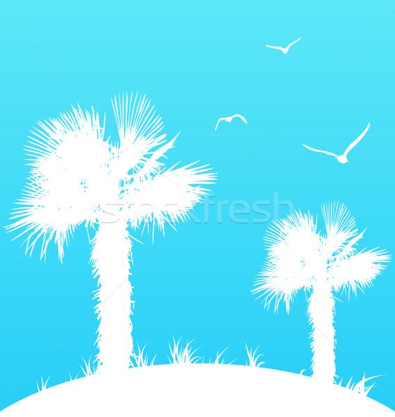 Lata palm mewy ilustracja plaży niebo Zdjęcia stock © smeagorl