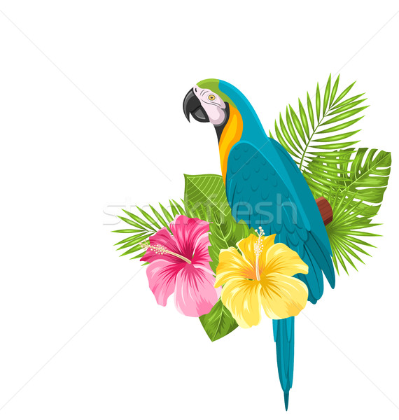Parrot Ara, Colorful Exotic Flowers Blossom and Tropical Leaves Stock photo © smeagorl