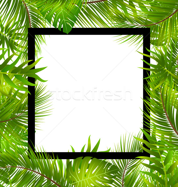 Beautiful Border with Tropical Palm Leaves Stock photo © smeagorl