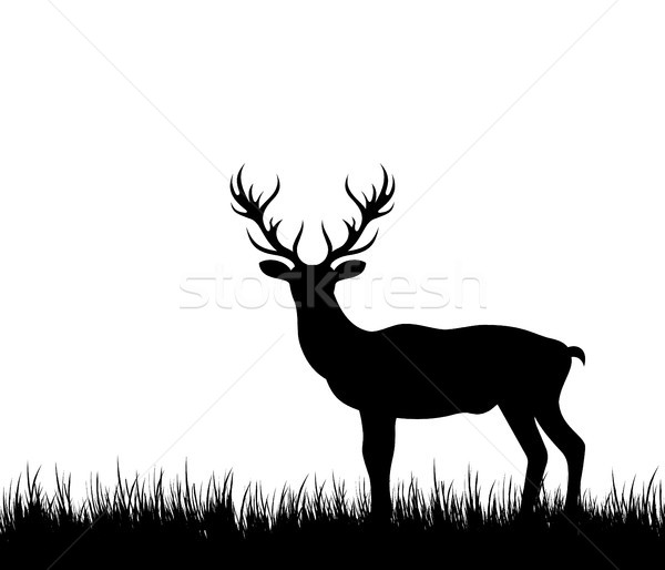 Silhouette Hirsch Rentiere Wald Gras Illustration Stock foto © smeagorl