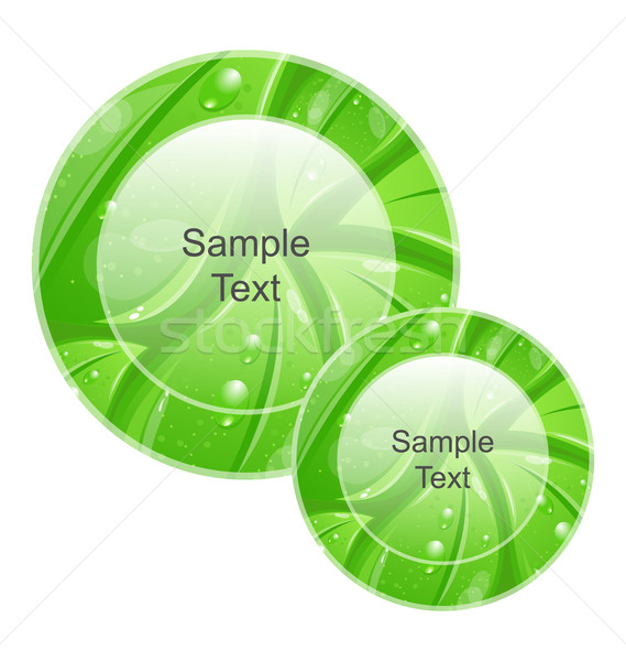Eco Friendly Icons for web Design, Leaves Texture Stock photo © smeagorl