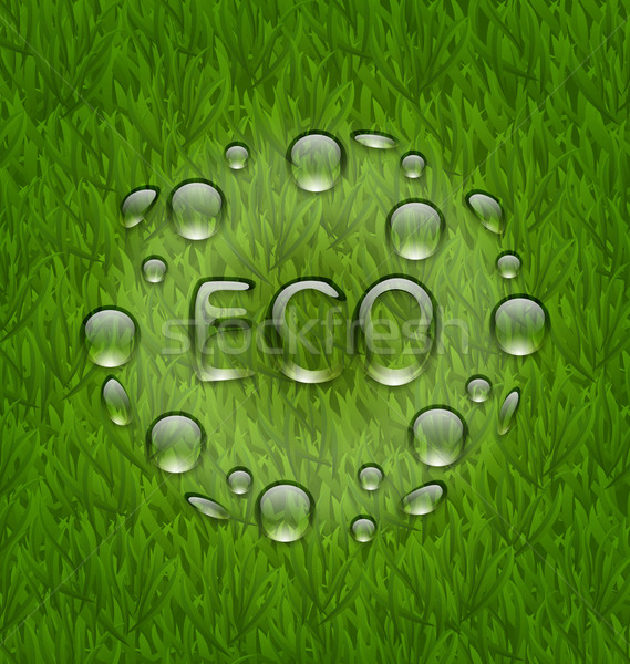 Eco friendly background with water drops on fresh green grass te Stock fotó © smeagorl