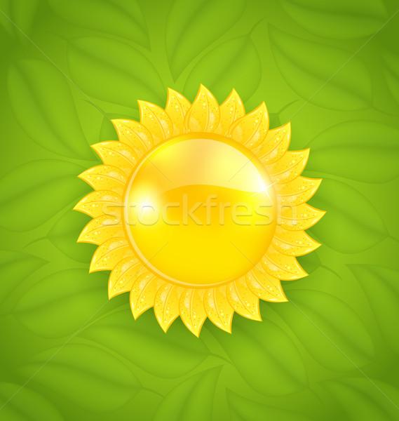 Absztrakt nap zöld levelek textúra környezetbarát illusztráció Stock fotó © smeagorl
