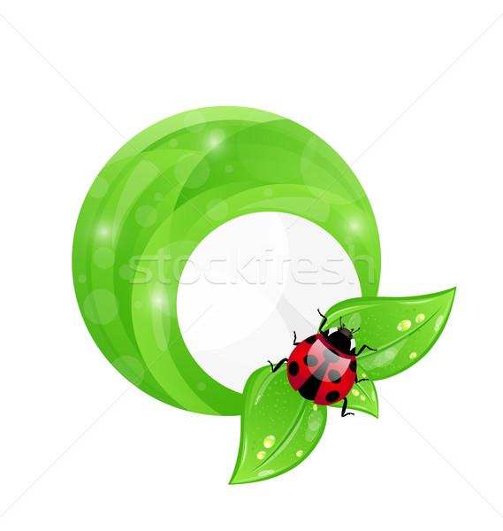 Verde quadro folha elementos joaninha Foto stock © smeagorl