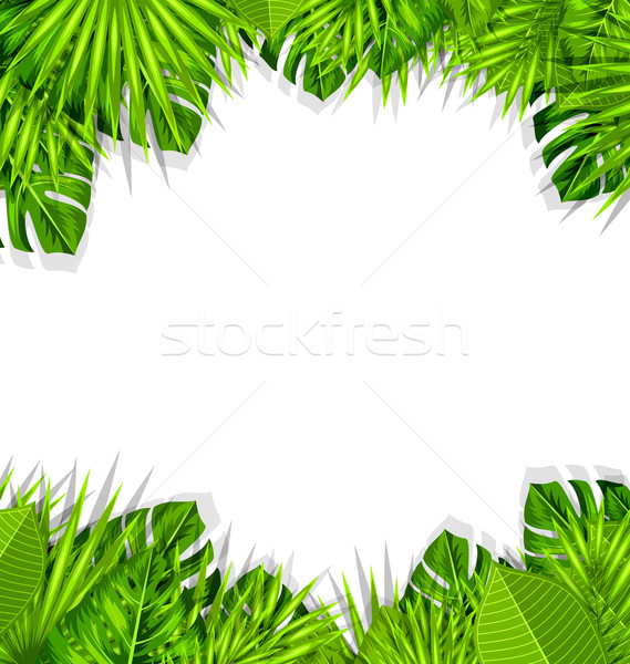 Summer Fresh Background with Tropical Leaves Stock photo © smeagorl