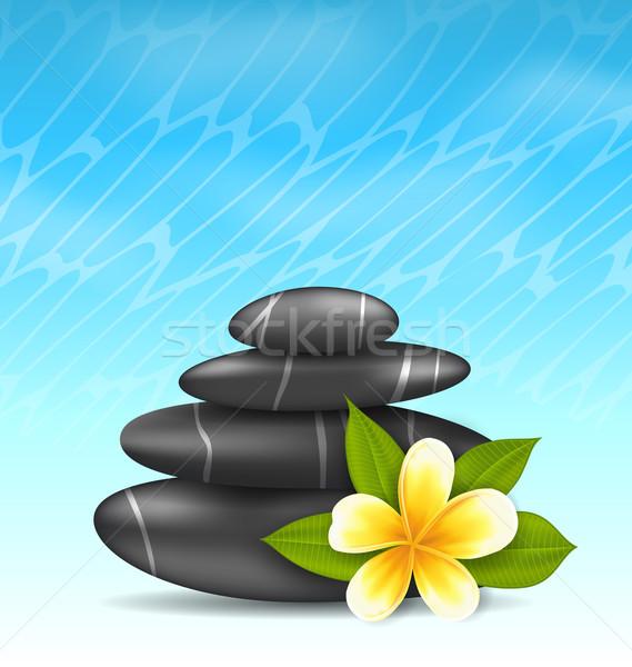 Natural background with frangipani flower (plumeria) and pyramid Stock photo © smeagorl