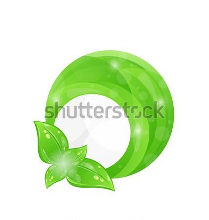 Zielone ramki liści elementy eco ilustracja Zdjęcia stock © smeagorl
