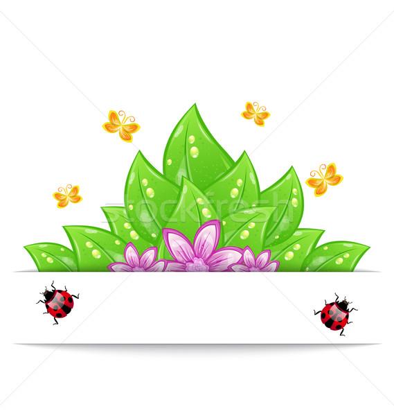 Kártya zöld levelek virág pillangó katicabogár Stock fotó © smeagorl