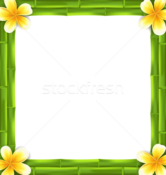 Natural Frame Made Bamboo and Frangipani Flowers, Copy Space for Your Text Stock photo © smeagorl