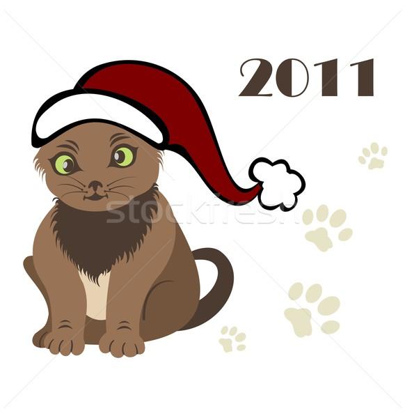 Nowy rok 2011 kot symbol ramki sztuki Zdjęcia stock © smeagorl