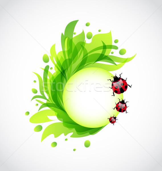 Eco floral transparente joaninhas ilustração primavera Foto stock © smeagorl