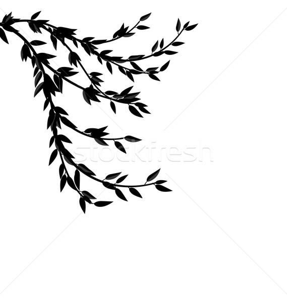 Zwarte silhouet tak boom illustratie frame Stockfoto © smeagorl